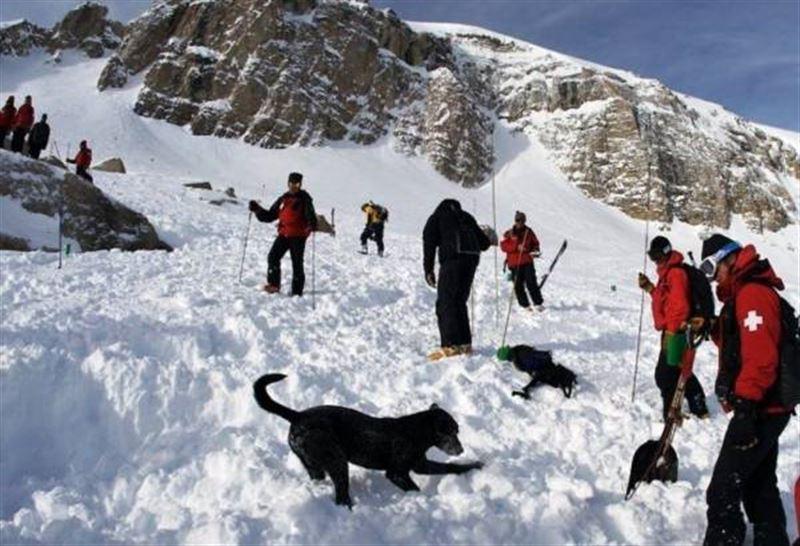 В швейцарских Альпах более 10 человек попали под лавину