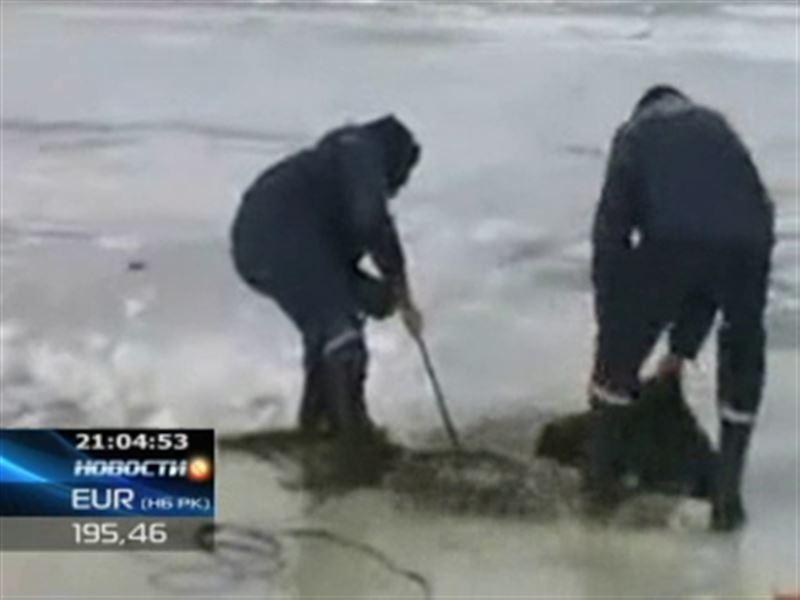 На озере Алаколь провалилась машина с рыбаками