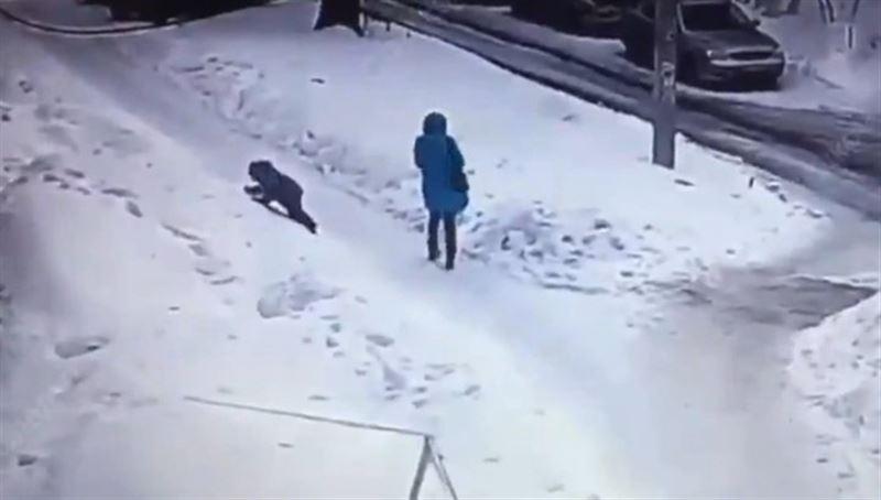Падение глыбы льда с крыши на ребенка попало на видео