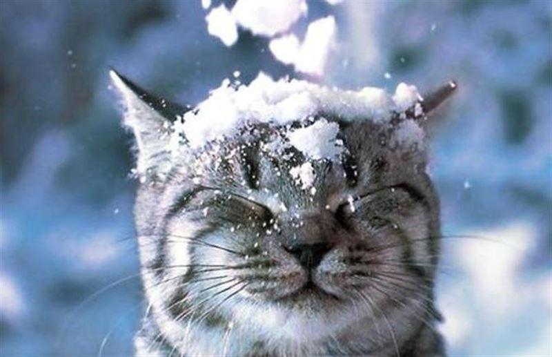 Какая погода будет в Казахстане в первый день весны