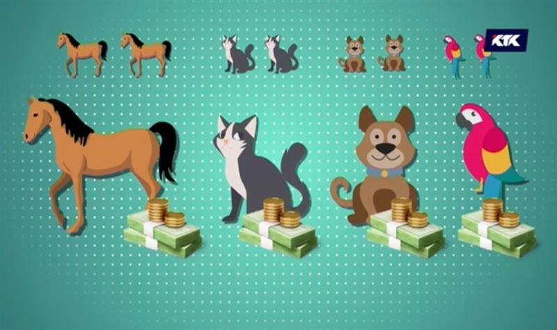 Деньги под матрасом придётся декларировать, породистых кошек и собак – тоже