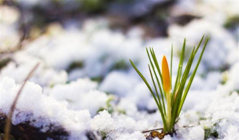 Прогноз погоды по Казахстану на понедельник, 11 марта