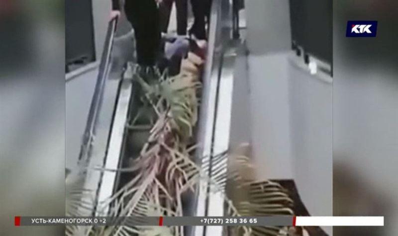 Врачи рассказали о состоянии астанчанки, на которую упала пальма