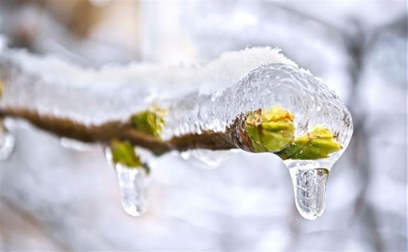 Какой будет погода в Казахстане 14 марта