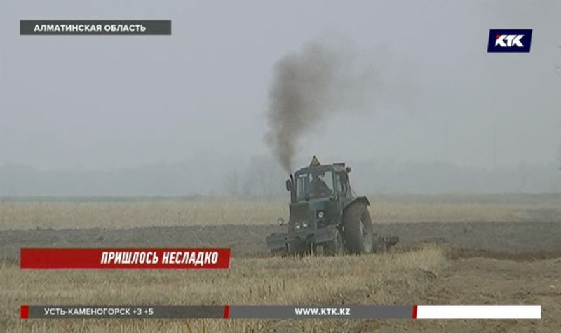 «Урожая не будет»: свекловоды Алматинской области грозят срывом посадок