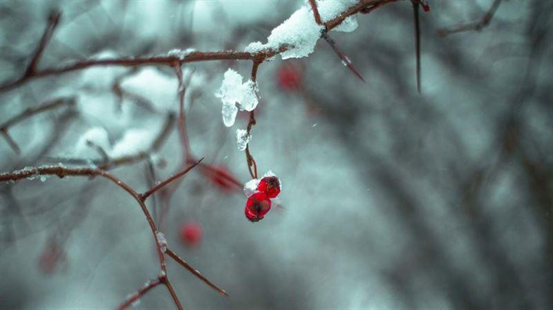 Неустойчивую погоду обещают синоптики в Казахстане в воскресенье