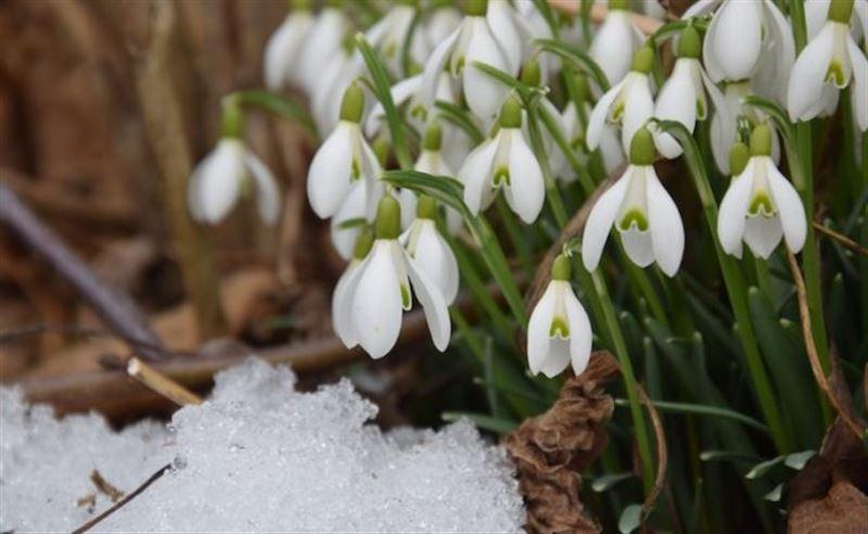 22 марта в Казахстане ожидается неустойчивый характер погоды