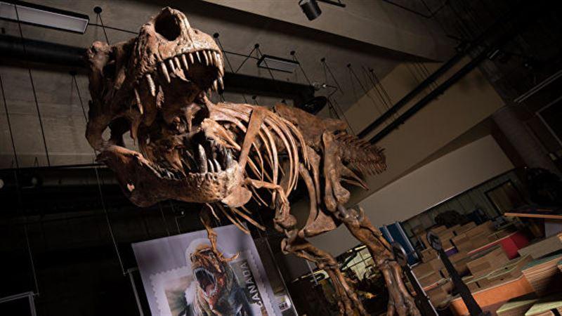 Канадские ученые рассказали о самом крупном тираннозавре в мире