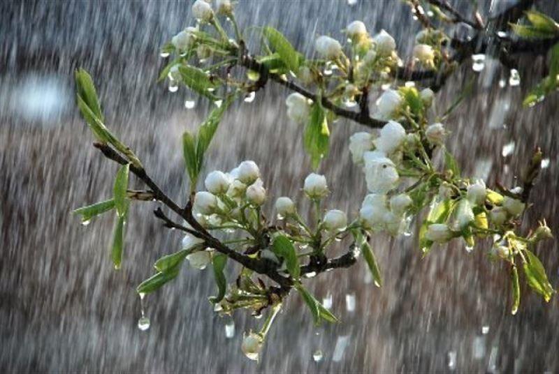Прогноз погоды по Казахстану на вторник, 26 марта