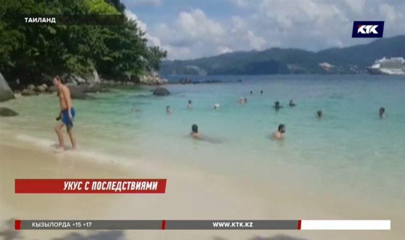 Отдыхающих в Таиланде предупреждают об опасных комарах