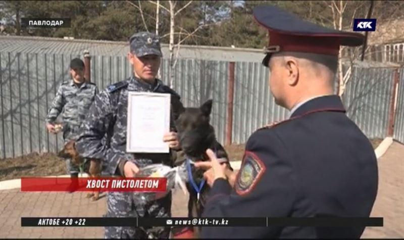 Полицейских с хвостами наградили в Павлодаре