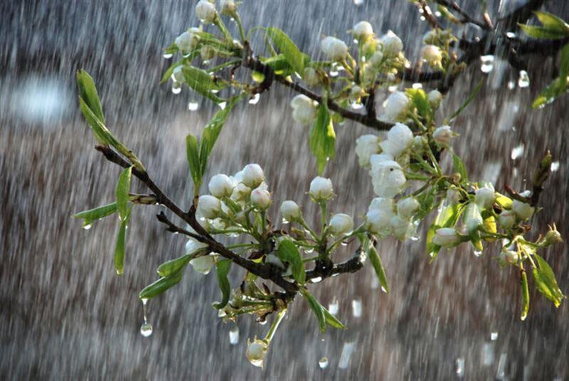 Прогноз погоды по Казахстану на вторник, 16 апреля