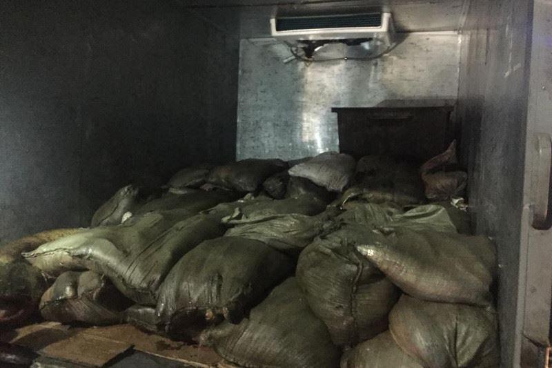 Карагандинец хотел перевезти более тонны рыбы без документов
