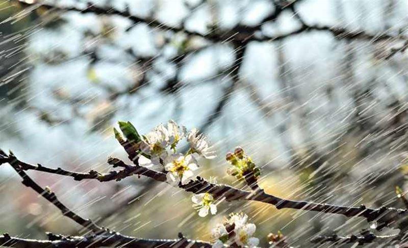 Синоптики рассказали о погоде в Казахстане в субботу, 27 апреля
