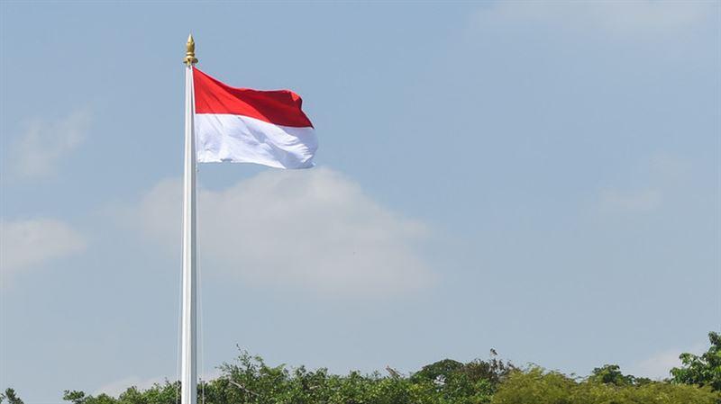 Глава Индонезии Джоко Видодо захотел перенести столицу по примеру Казахстана
