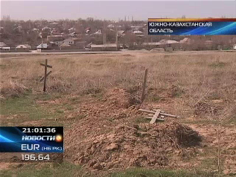 В Сайрамском районе ЮКО дикие собаки раскапывают могилы