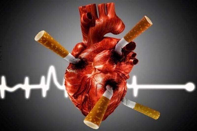 Стали известны простые способы защиты от заболеваний сердца