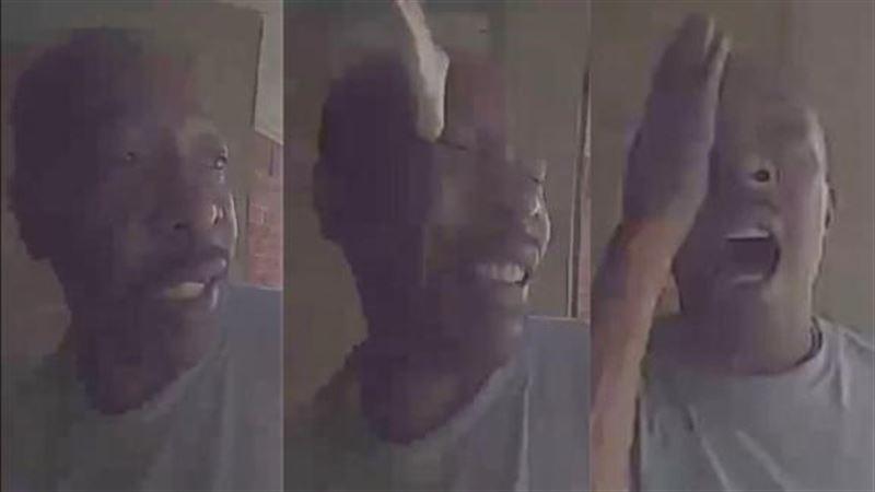 Змея укусила мужчину в глаз на пороге дома