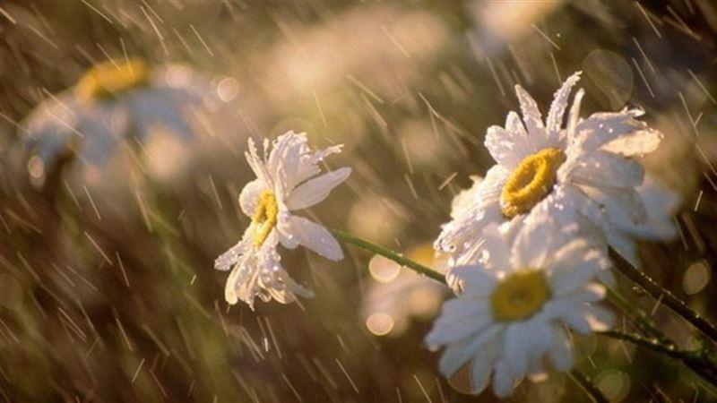 Прогноз погоды по Казахстану на среду, 15 мая