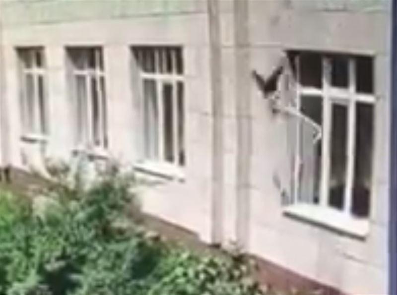 Ребенок, выпавший в Талдыкоргане из окна детского садика, в коме