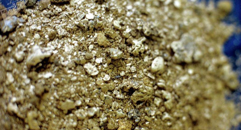 Австралияда ер адам 1,4 килограмм саф алтын тауып алды