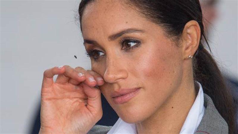 Бывшая подруга Меган Маркл рассказала, что до замужества она искала богатого британца