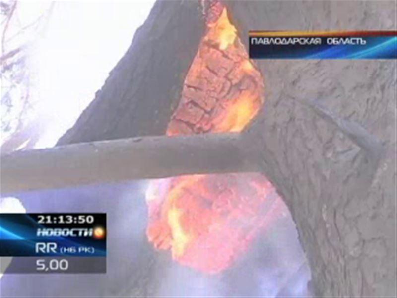 В Павлодарской области горел Чалдайский бор