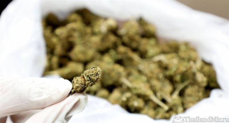 В Таиланде туристам разрешили употреблять марихуану в медицинских целях