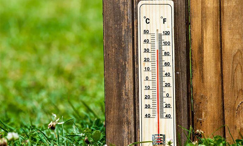 Какая погода ожидается в Казахстане в субботу, 1 июня