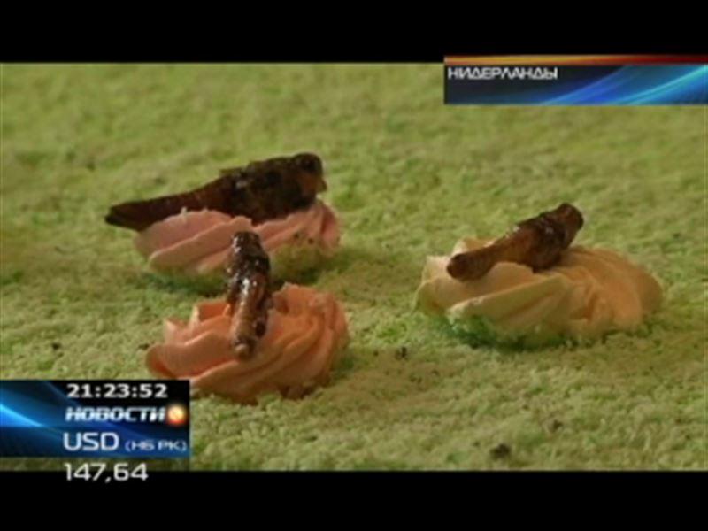 Голландские студенты предлагают добавлять в пищу насекомых