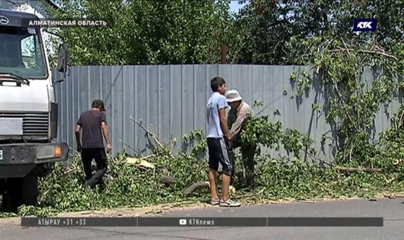Погиб водитель машины, на которую упало поваленное ураганом дерево