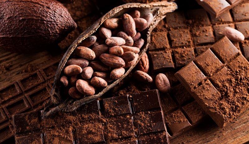 Ученые рассказали о пользе шоколада для похудения