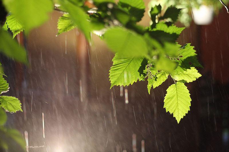 Какой будет погода в Казахстане 27 июня