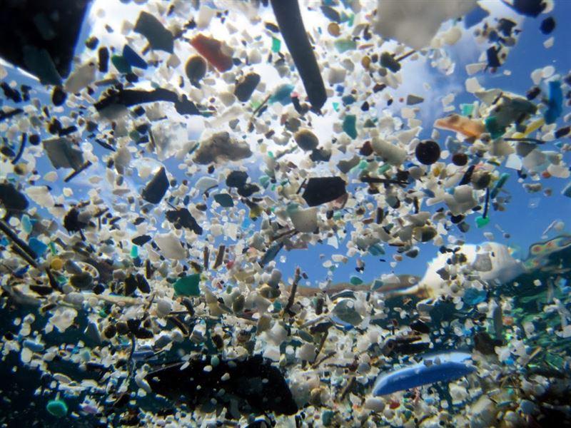 Лидеры G20 могут договориться прекратить выброс пластика в Мировой океан