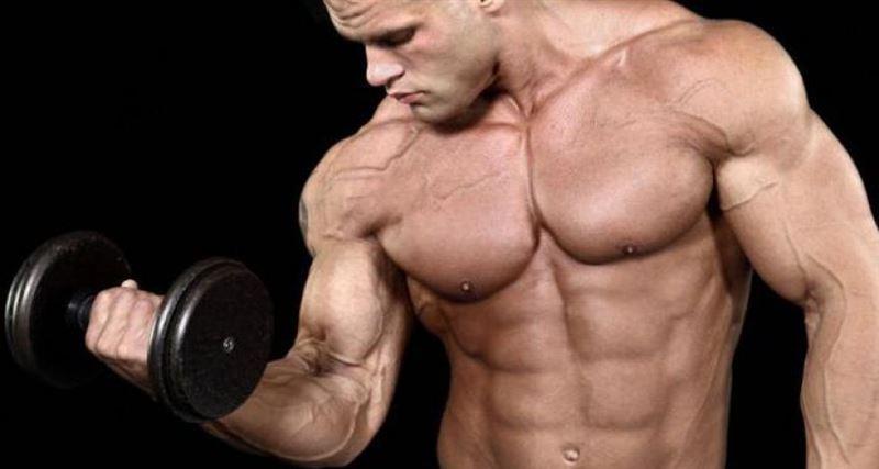 Учёные нашли способствующий росту мышц продукт
