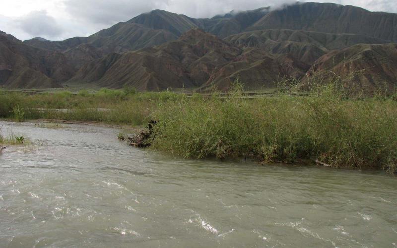 Авто, в котором были чиновник и его семья, упало в реку