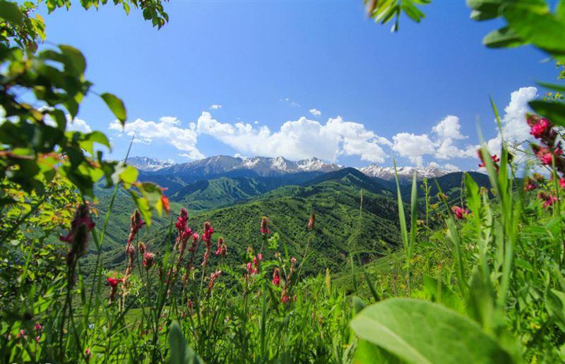Прогноз погоды по Казахстану на пятницу, 5 июля