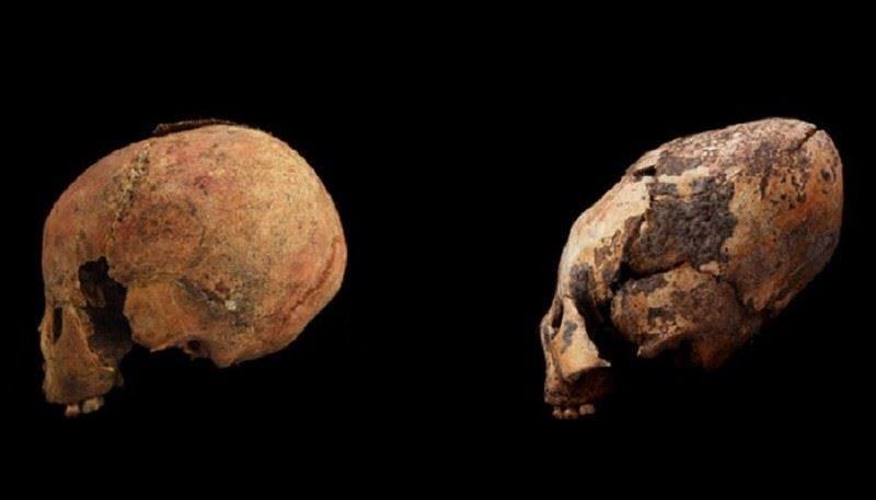 Археологтар 11 өзгепланеталықтың бас сүйегін тапты