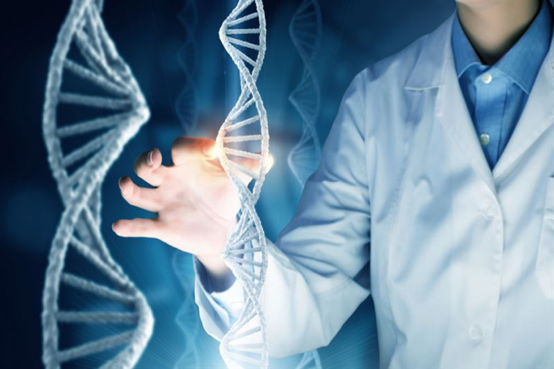 Ученые раскрыли загадку эволюционного развития