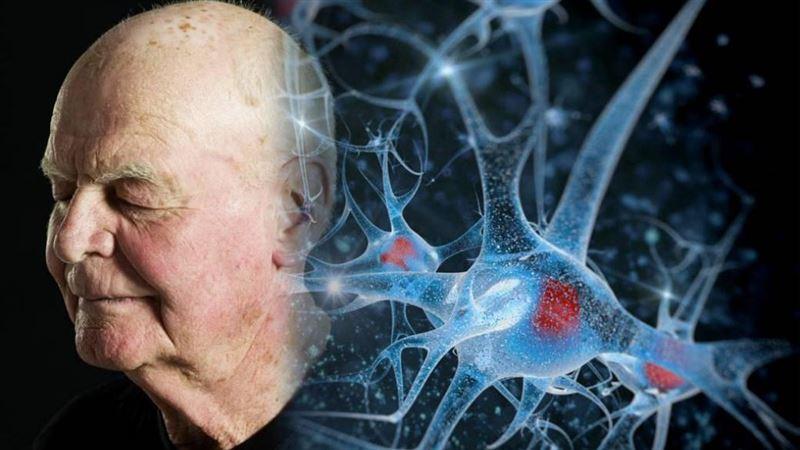 Специалисты рассказали о способах, которые могут отсрочить старение мозга