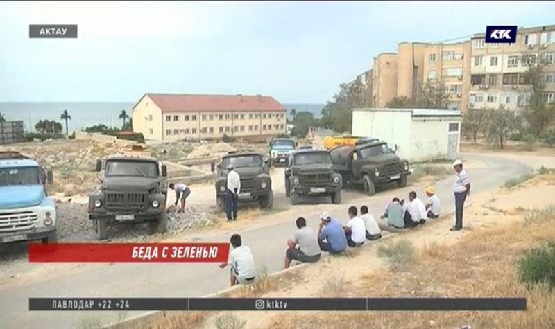 Водители водовозов отказались поливать зелень в Актау