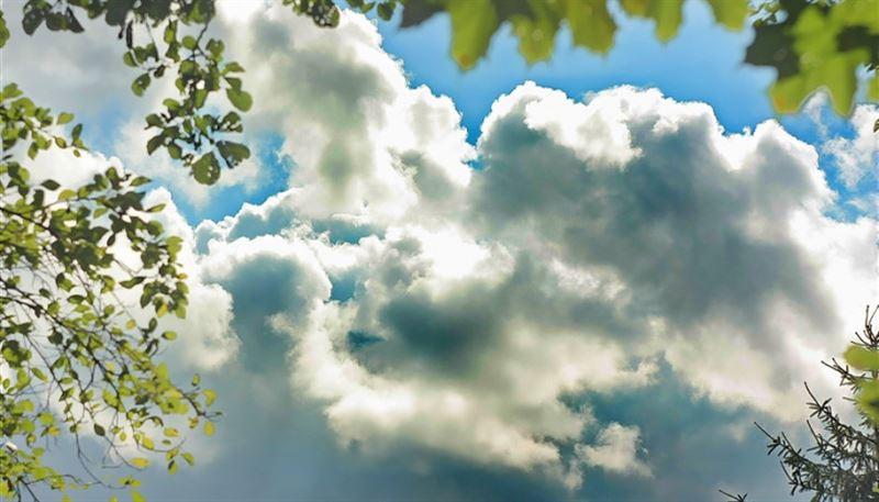 Какая погода ждет казахстанцев 31 июля