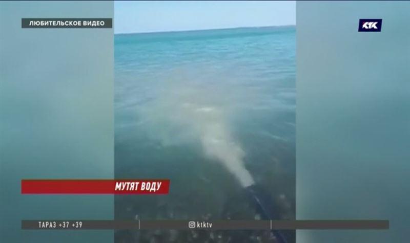 Владелец зоны отдыха на Алаколе сливал грязную воду в озеро