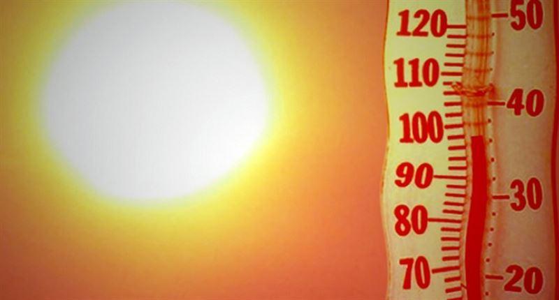 Сильную жару прогнозируют в Казахстане