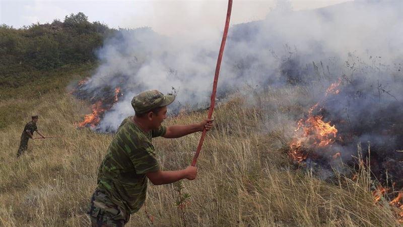 Крупный степной пожар тушат в Алматинской области, погибло три человека