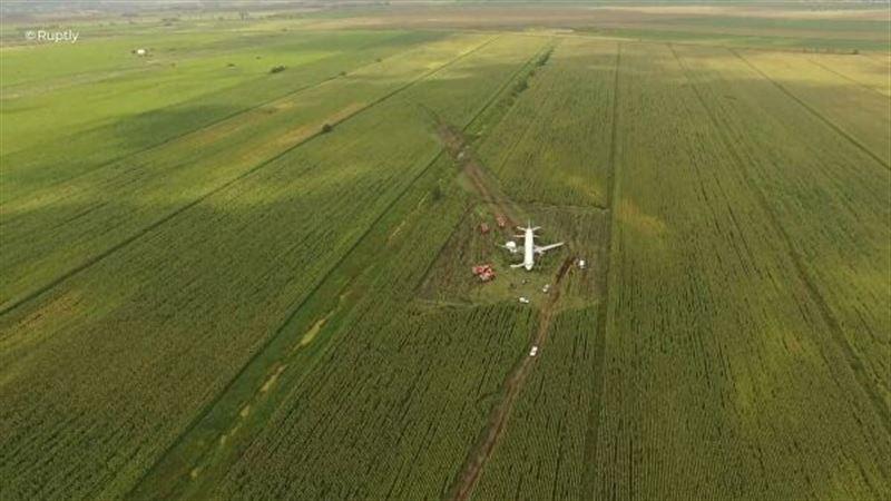 76 людям потребовалась медицинская помощь после аварийной посадки А-321