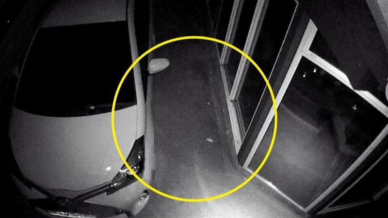 Баласы әкесінің әруағы түсіп қалған видеоны жариялады