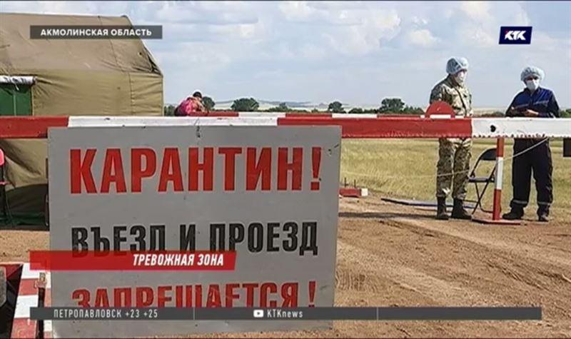 Сельчане в Акмолинской области отведали мяса, заражённого сибирской язвой