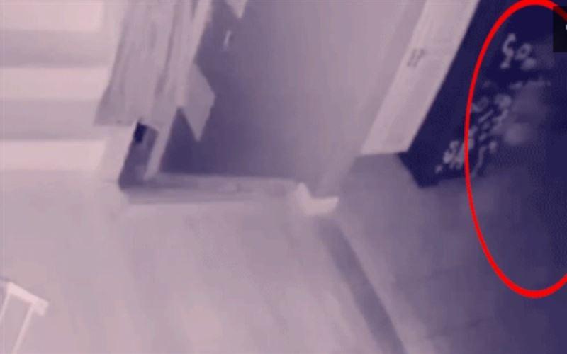 Камера үйдің ішінде қозғалған белгісіз бейнені түсіріп алған