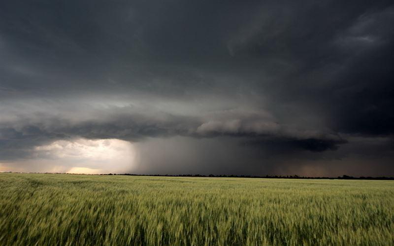 Какая погода будет в Казахстане в субботу, 24 августа